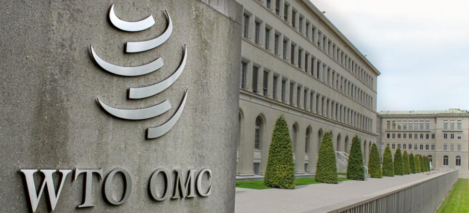WTO---c-Bernsten--Shutterstock.png